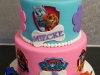 Paw Patrol cake for Miecke