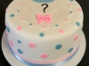 Reveal cake - Beau or a Bow.jpg